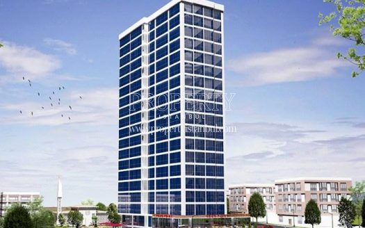 Bilim Tower project