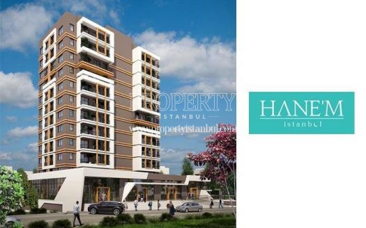 Hanem Gunesli project