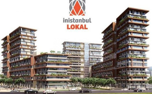 Inistanbul Lokal project