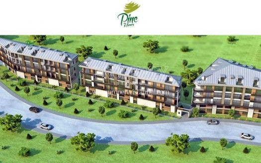 Pine Homes project