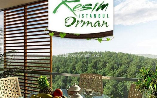 Resim Istanbul Orman project