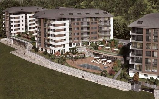 Terrace Koru project