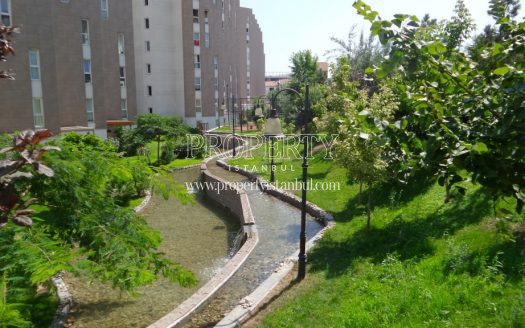Ataman Karina pond