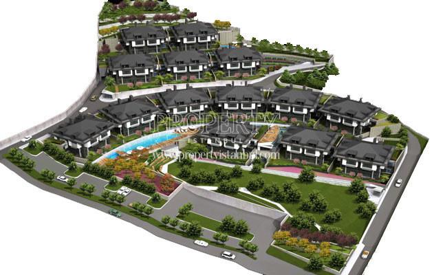 The project of Seba Vista